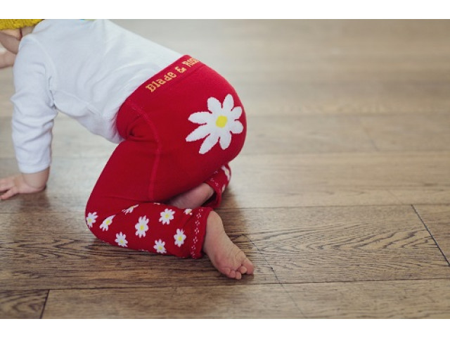 Blade & Rose | Legging | Daisy Red0 | Madelief